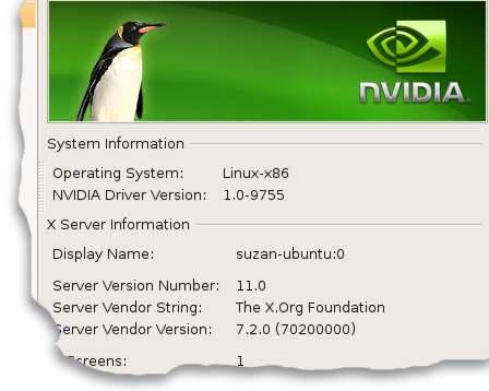 nvidia 9755